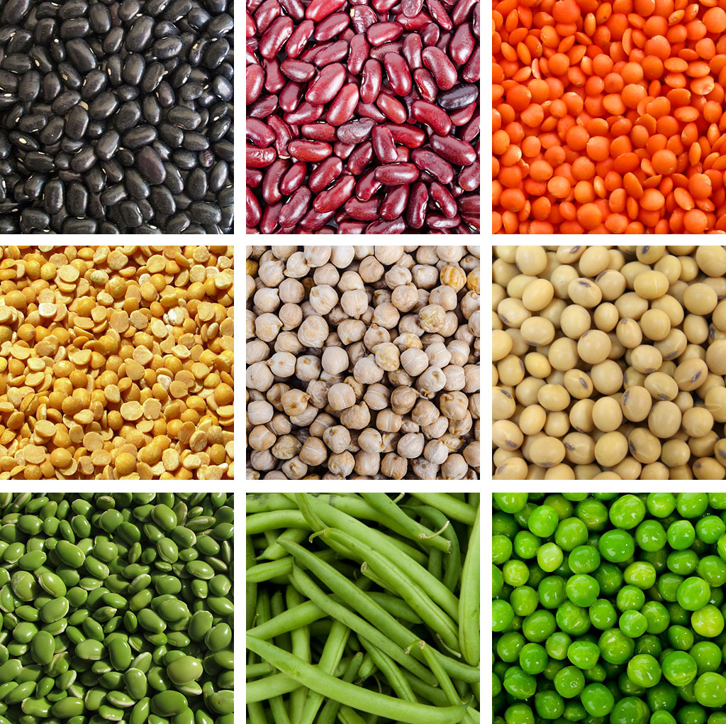 Left to right top to bottom dry legumes black beans red kidney