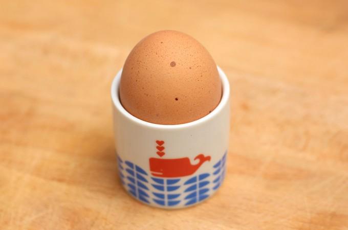 The egg shot