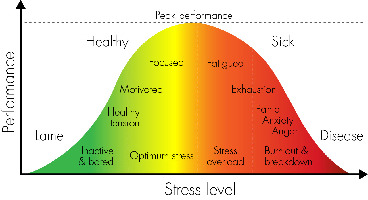 A Comparison of Perceived Stress
